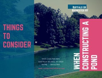 Things to Consider When Constructing a Pond