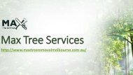 Tree Stump Removal Melbourne | Max Tree Services