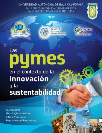 Las pymes en el contexto de la innovación y la sustentabilidad