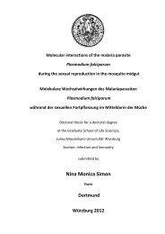 Nina Monica Simon - OPUS - Universität Würzburg