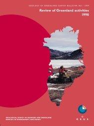 Review of Greenland activities 1998 - Geus