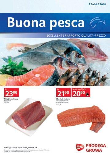 Frischfisch AGH I