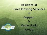 Are you looking for Next day Lawn mowing service  in Texas