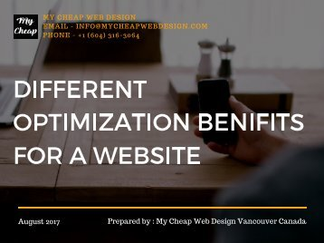 Different Optimization Benifits for a Website
