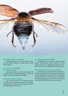 """KidsPower """"Insekten"""" 2/2014 - Seite 7"""