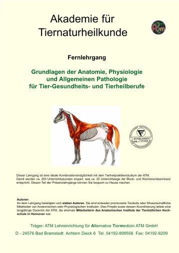 Grundlagen der Anatomie, Physiologie und Allgemeinen ... - Atm