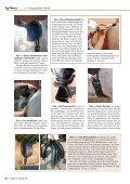 Passt der Sattel? - Deutsches Institut für Pferdeosteopathie - Page 5