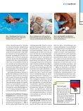 physiopraxis - Deutsches Institut für Pferdeosteopathie - Page 3