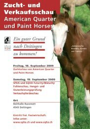 Open House - Swiss Paint Horse Association