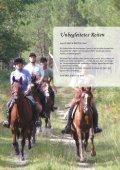 Unbegleitetes Reiten - Pferd & Reiter - Seite 3