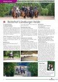 Unbegleitetes Reiten - Pferd & Reiter - Seite 4