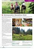 Unbegleitetes Reiten - Pferd & Reiter - Seite 6