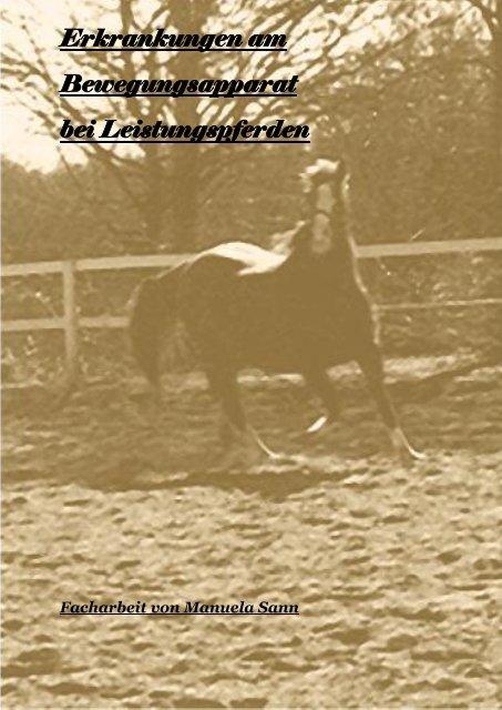 Erkrankungen am Bewegungsapparat bei Leistungspferden
