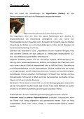 Erkrankungen am Bewegungsapparat bei Leistungspferden - Seite 5