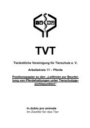 Positionspapier Pferdehaltung - Tierärztliche Vereinigung für ...