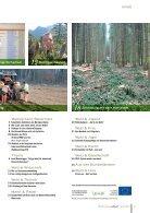 Waldverband Aktuell - Ausgabe 2018-03 - Page 3