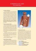 durchgangspfannen - dieBauwelt - Seite 3