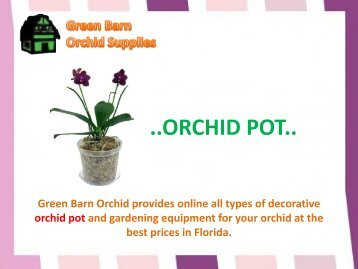 Orchid Pot for sale in Florida-Green Barn Orchid Supplies