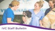 Staff Bulletin - Final