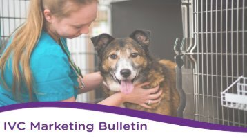 Marketing Bulletin Final