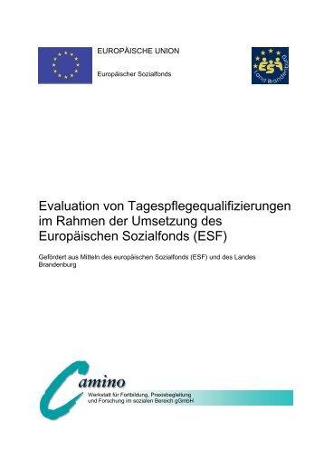 Evaluation von Tagespflegequalifizierungen im Rahmen der ...