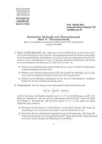 Statistische Mechanik und Thermodynamik Blatt 9 ... - TUM