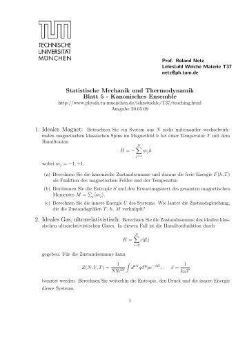Statistische Mechanik und Thermodynamik Blatt 5 ... - TUM