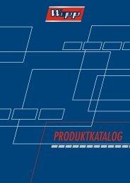 01. - Werkstatt Profi Programm - Austria