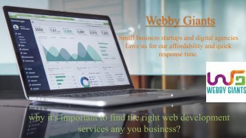 importance-of-right-web-development-services-for-your-business
