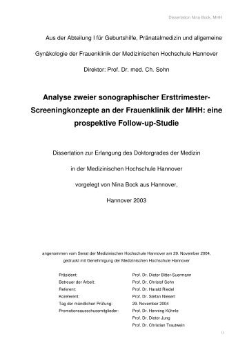 Dissertationsschrift 2