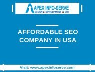 Affordable SEO Company in USA-Apex Info-Serve