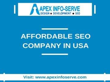 Affordable SEO Company in USA-Apex Info-Serve