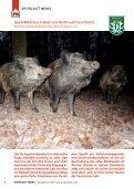 Spurlaut -Wissensmagazin für Jäger von heute 0/2018 - Seite 6