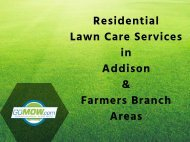Are you looking for Lawn Care Services in Texas?