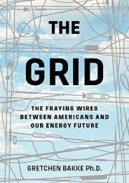 Download The Grid: The Fraying Wires Between Americans and Our Energy Future   PDF File