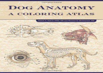 PDF TOP TREND Dog Anatomy A Coloring Atlas