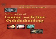 [+][PDF] TOP TREND Color Atlas of Canine and Feline Ophthalmology  [DOWNLOAD]