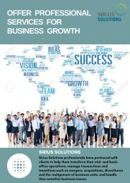 Sirius Solution - Professional Services For Business Growth