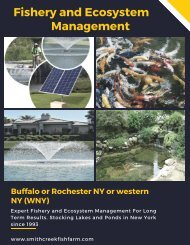 Fishery and Ecosystem Management - New York