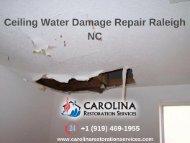 Ceiling Water Damage Repair Raleigh NC