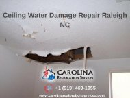 Ceiling Water Damage Repair Raleigh NC