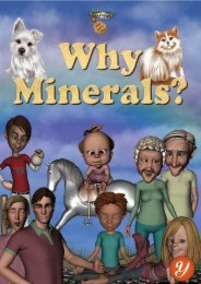 Why Minerals?