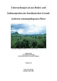 Untersuchungen an aus Boden- und Sedimentproben des ...