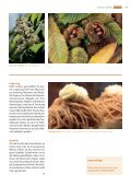 suteria, cHocolatier in solotHurn - Pistor - Seite 6