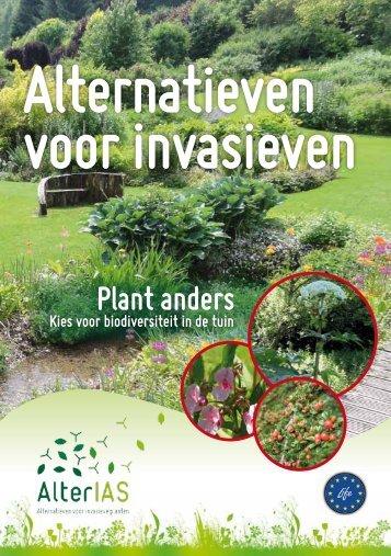 Alternatief voor invasieven plant