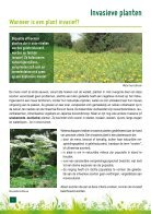 Alternatief voor invasieven plant - Page 4