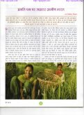 Agriculture field - Page 4