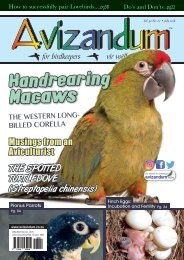 Avizandum ( July 2018 )