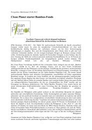Clean Planet startet Bambus-Fonds - Bamboo Energy 1