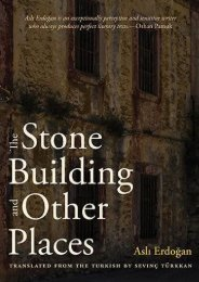 Download PDF The Stone Building and Other Places Online